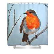 Robin In The Tree Shower Curtain