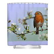 Robin On Cherry Blossom Shower Curtain