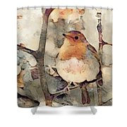 Robin Song Of Spring Shower Curtain