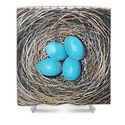 Robin's Eggs Shower Curtain