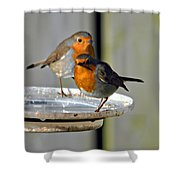 Robins Shower Curtain