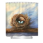 Robin's Two Eggs Shower Curtain