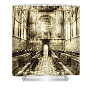 Rochester Cathedral Vintage Shower Curtain