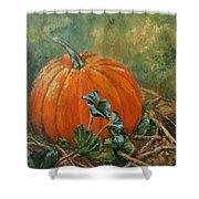 Rochester Pumpkin Shower Curtain