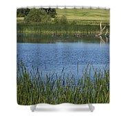 Rochester Wildlife Pond 1 Shower Curtain
