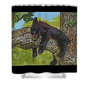 Rock-a-bye-baby/the Wild Bunch #2 Shower Curtain