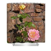 Rock And Rose Shower Curtain
