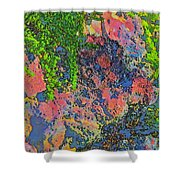 Rock And Shrub Abstract Bright Shower Curtain