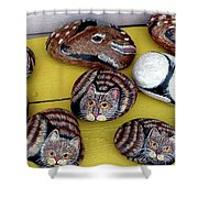 Rock Cats And Fawns Shower Curtain