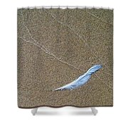 Rock Feather Glass Shower Curtain