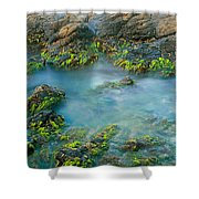 Rock Formations In The Sea, Bird Rock Shower Curtain