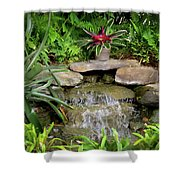 Rock Fountain IIi Shower Curtain