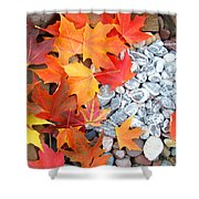Rock Garden Autumn Leaves Shower Curtain