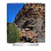 Rock Hill Shower Curtain