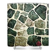Rock Wall 01 Shower Curtain