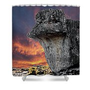 Rock Wallpaper Shower Curtain