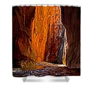Rock Walls Of Zion Narrows Shower Curtain