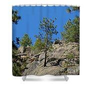 Rockin' Tree Shower Curtain