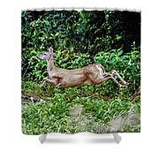 Rocking Deer Shower Curtain