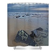 Rocks And Barnacles, Plum Island Shower Curtain