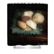 Rocks And Dust Shower Curtain