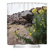 Rocks And Flowers Shower Curtain