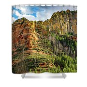 Rocks And Pines Shower Curtain