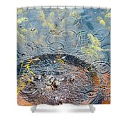 Rocks And Ripples Shower Curtain
