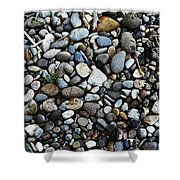 Rocks And Sticks On The Beach Shower Curtain