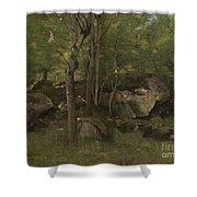 Rocks In The Forest Of Fontainebleau Shower Curtain
