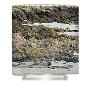 Rocky And Sandy Beach Shower Curtain