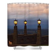 Rocky Butte Lamps Shower Curtain