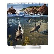 Rocky California Shore Shower Curtain