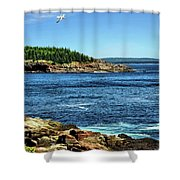 Rocky Coastline 3 Shower Curtain