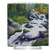 Rocky Creek Shower Curtain