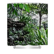 Rocky Fern Room Shower Curtain