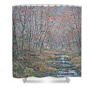 Rocky Forest. Shower Curtain