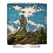 Rocky King Of Skies Shower Curtain