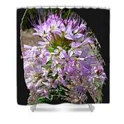 Rocky Mountain Bee Flower Shower Curtain