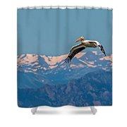 Rocky Mountain Pelican Shower Curtain