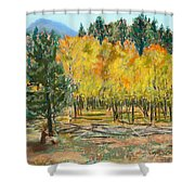Rocky Mountain Siesta Shower Curtain