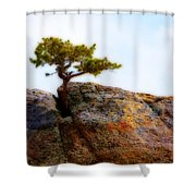 Rocky Mountain Tree Shower Curtain