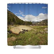 Rocky Mountain Valley Shower Curtain