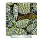 Rocky Nature Shower Curtain