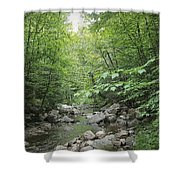 Rocky River In Green Shower Curtain