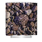 Rocky Road Shower Curtain