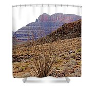 Rocky Slope Grand Canyon Shower Curtain
