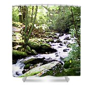 Rocky Stream 1 Shower Curtain