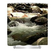 Rocky Stream 4 Shower Curtain