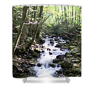 Rocky Stream 6 Shower Curtain